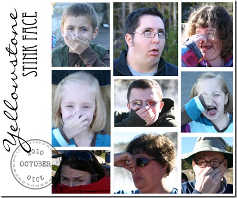 yellowstone stink face copy